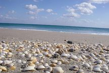 Beach'n it / Fun in the sun / by LaRrY