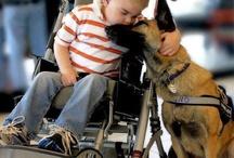 Humanity. / by Starlight Children's Foundation