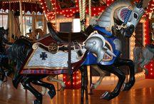 Carousel Beauties / by Judy Gaut
