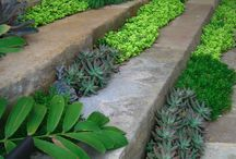 jardinagemLi / by li conte