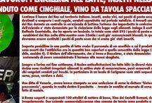 NEWS / by Io leggo l'etichetta 1400€ di risparmio