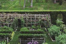 Garden / Garden / by Home Garden