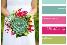 Color Inspiration - Home & Photography / by Tricia Brummel