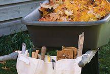 Lawn, Deck and Garden Ideas / by Debbie Skipper