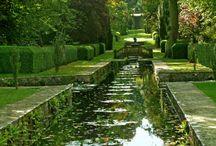 Gardens & Greens / by Tatiana Sotiriou