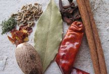 Herbs and Spices! / by Hannah Roberts