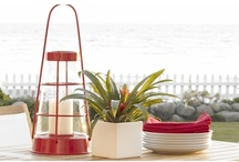 Outdoor Decor / by Catherine Comerford
