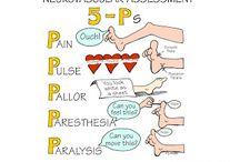 Nursing Assessment / by Shane Bowles
