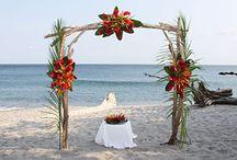 Ylang Ylang Beach Resort Weddings / Weddings in Paradise #YlangYlangBeachResort / by Ylang Ylang Beach Resort