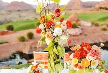 Monica's Wedding / by Cara Nickels