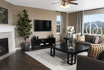 Retirement family room / by Susan Skibicki