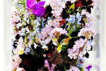 Flowers & Gemstones / by Heidi Harman