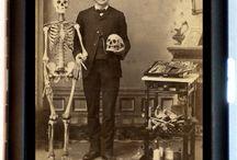 Skulls & Skeletons / by Denise Joslin
