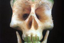 [skulls] / by Rawxi Oroskull