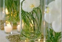 Wedding decor / by Stephanie Williams