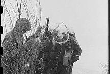 Korean War / by Joyce Rusch