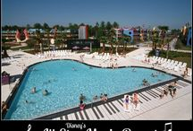 Disney's All-Star Music Resort / by The Magic For Less Travel - Specializing in Disney and Universal Vacations