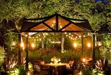 Backyard Ideas / by Carol Hillidge