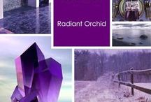 Radiant Orchid  / Pantone's 2014 Color of the year -Radiant Orchid / by Mazel Magazine