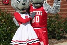 NCSU...Go Wolfpack  / by Tammy Autry