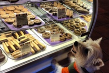 dogbakery / by Altea Coselli