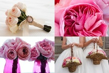 Wedding Planners / by Tim Sudall