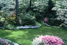 Habitat - Landscape Love / Outdoor environments can be so inspiring. / by Cathy Prothro