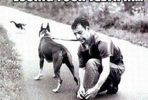 Funny! / by Rach Stroud