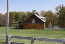 Pike/Calhoun Counties / by Harpole's Heartland Lodge