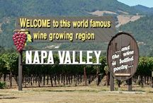 Welcome to Wine Country!  (Napa, Sonoma, Calistoga, St. Helena) / by Sandra Ferguson Raymond