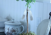 DIY topiaries / by Christine Baker