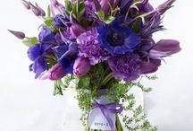 Purple / by Juli Martin