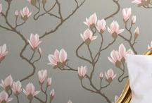 Magnolia / by Sarah B