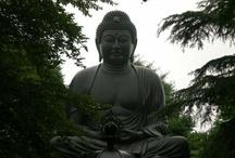 Buddha & Buddhism / Buddha and all things related to Buddhism / by Dwayne Hearn