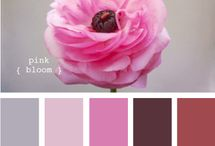 colour combinations / by M G
