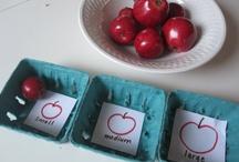 Apples unit / by Courtney Burt
