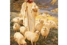 The Good Shepherd / by Seri Dreiling
