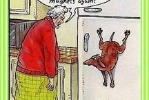 amusing / by julia mckechnie