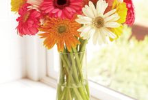 Flowers / by Krista Goldsmith