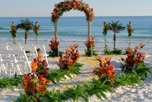 Future wedding beach?  / by Katy Kerce