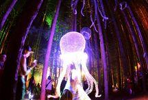 Festivals / by Joyce Marker