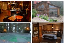 Asheville / places to stay in Asheville / by Travetta Johnson