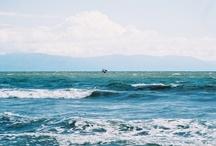 Beach Love / by Lisa Starbuck