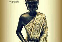 Buddha  / by Jen Rowan
