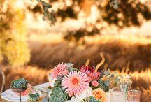 Wedding / by Anna Jolley
