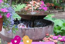 Plantitas, jardines (: ideas!! / by Mafer Barriga Aguirre