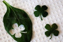 { HOLIDAY } St. Patrick's Day / by Sarah Guilliot