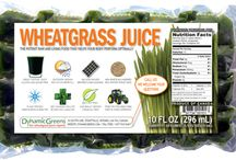 Wheatgrass Juice / Wheatgrass Juice @DynamicGreens #wheatgrass #dynamicgreens / by DynamicGreens