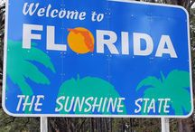 Florida / by Clarice Strohman
