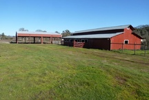 HORSE Property Realestate Listing  / by Mj  Martha Steward